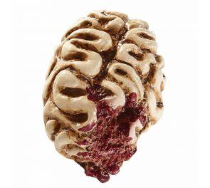 Veriset aivot sopivat halloween-rekvisiitaksi
