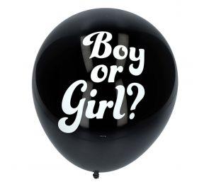 Boy or Girl -ilmapallot, 3 kpl