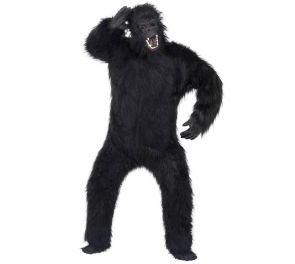 Gorilla-asu