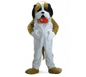 Deluxe-Koira