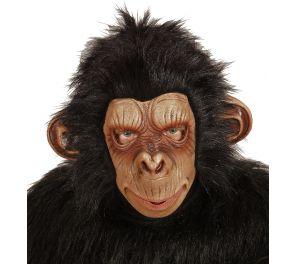 Apina-naamari