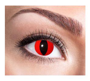 Punaiset piilolinssit, musta kissan pupilli, 12 kk