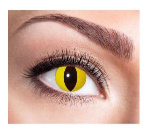Keltaiset piilolinssit, musta kissan pupilli, 12 kk