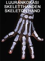 Luurankokäsi • Skeletthanden • Skeleton hand